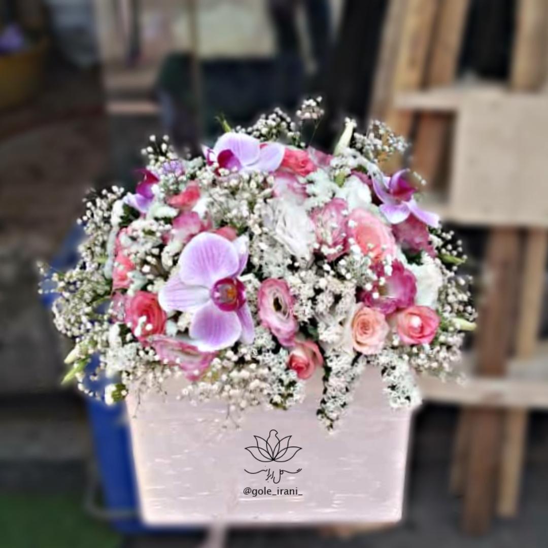 خرید و قیمت باکس گل ارغوان باکس گل ارکیده خرید گل ارکیده باکس ارکیده ارزان سفارش باکس گل با قیمت مناسب