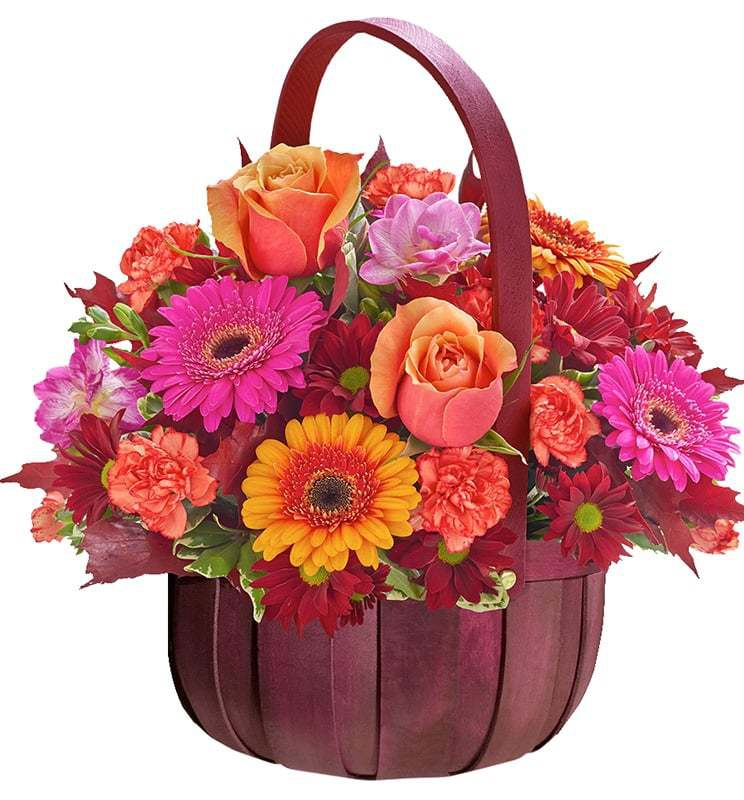خرید و قیمت سبد گل رویا سفارش سبد گل رویا گل ایرانی قیمت سبد گل ساده ارسال رایگان گل در تهران گل ایرانی خرید گل