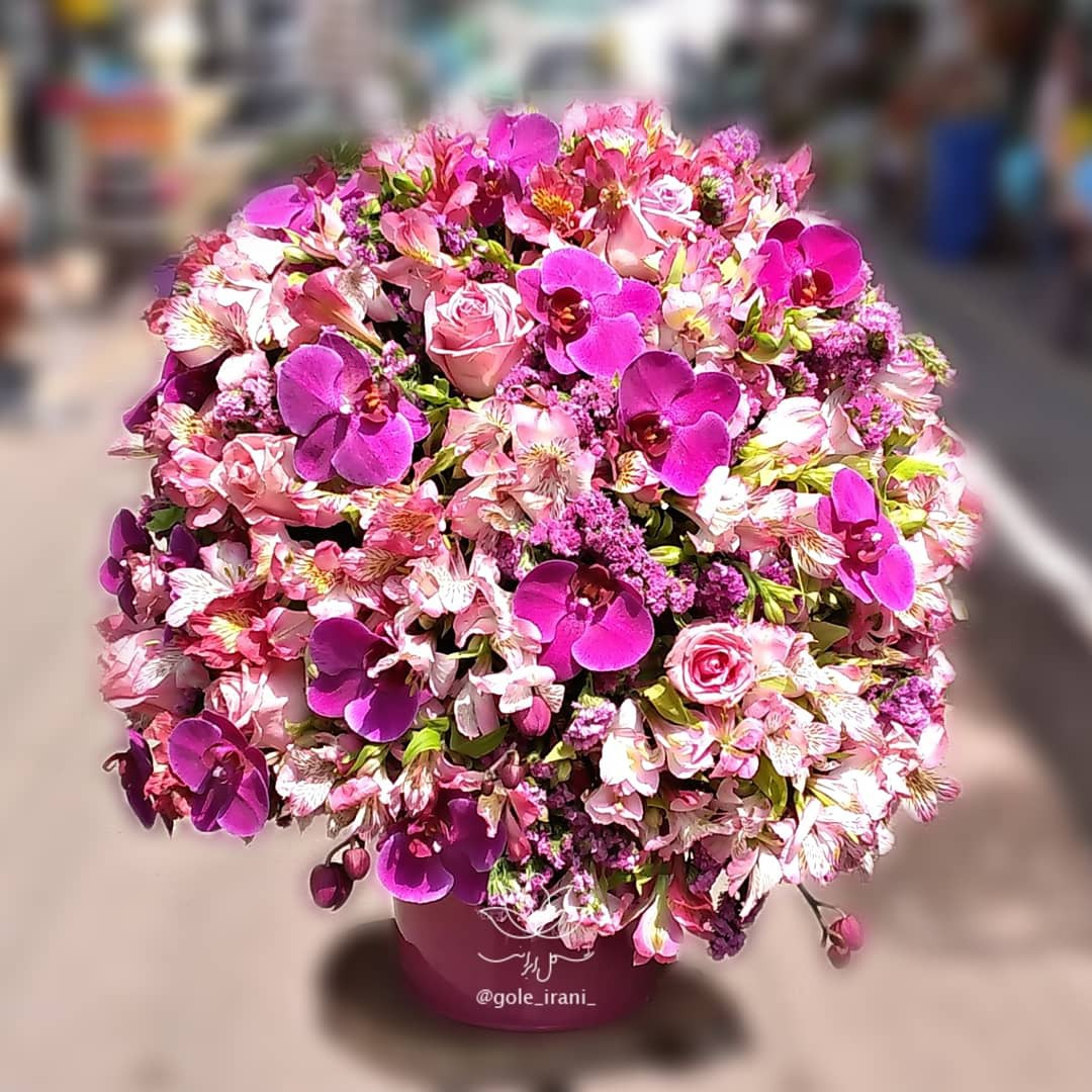 خرید و قیمت باکس گل شراب عشق سفارش باکس گل صورتی باکس گل ارزان خرید باکس گل با ارسال رایگان