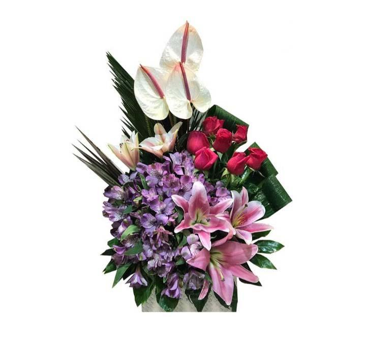 خرید و قیمت باکس گل بادصبا سفارش باکس گل ارزان گل ایرانی خرید آنلاین باکس گل خرید باکس گل با ارسال رایگان