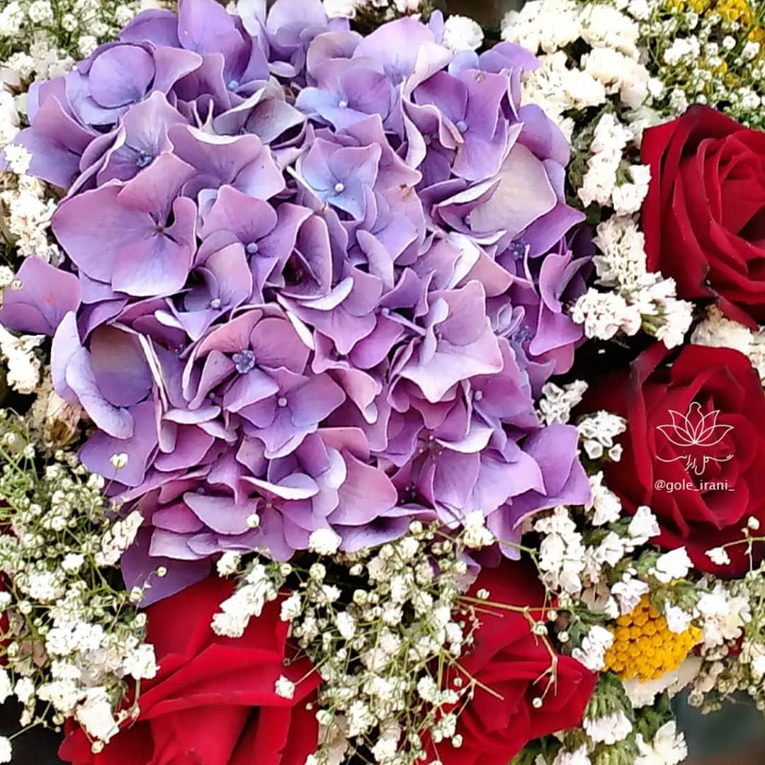 گل ایرانی بازار آنلاین گل و گیاه سفارش باکس گل ادریسی باکس سورپرایز خرید اینترنتی باکس گل