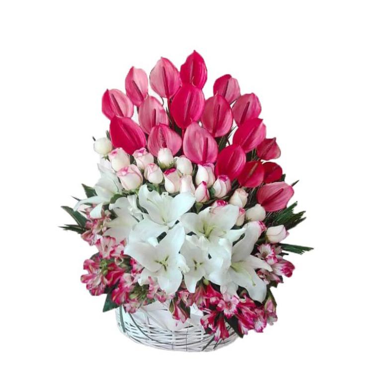خرید و قیمت سبد گل مستان سفارش سبد گل قیمت سبد گل بله برون سبد گل عیادت سبد گل ارزان گل ایرانی