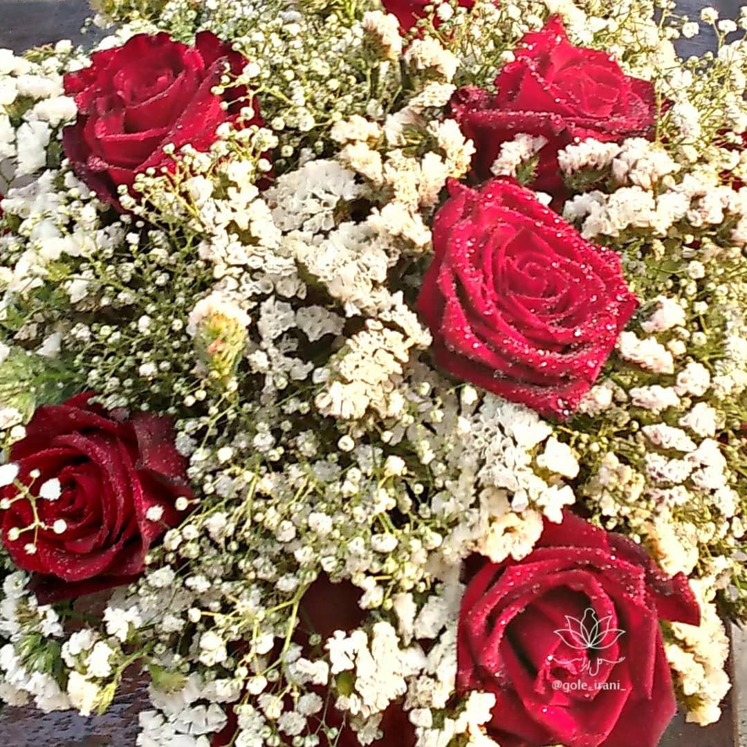 بازار آنلاین گل و گیاه خرید باکس گل رز از گل ایرانی سفارش باکس گل ارزان قیمت باکس گل رز تولد خاص