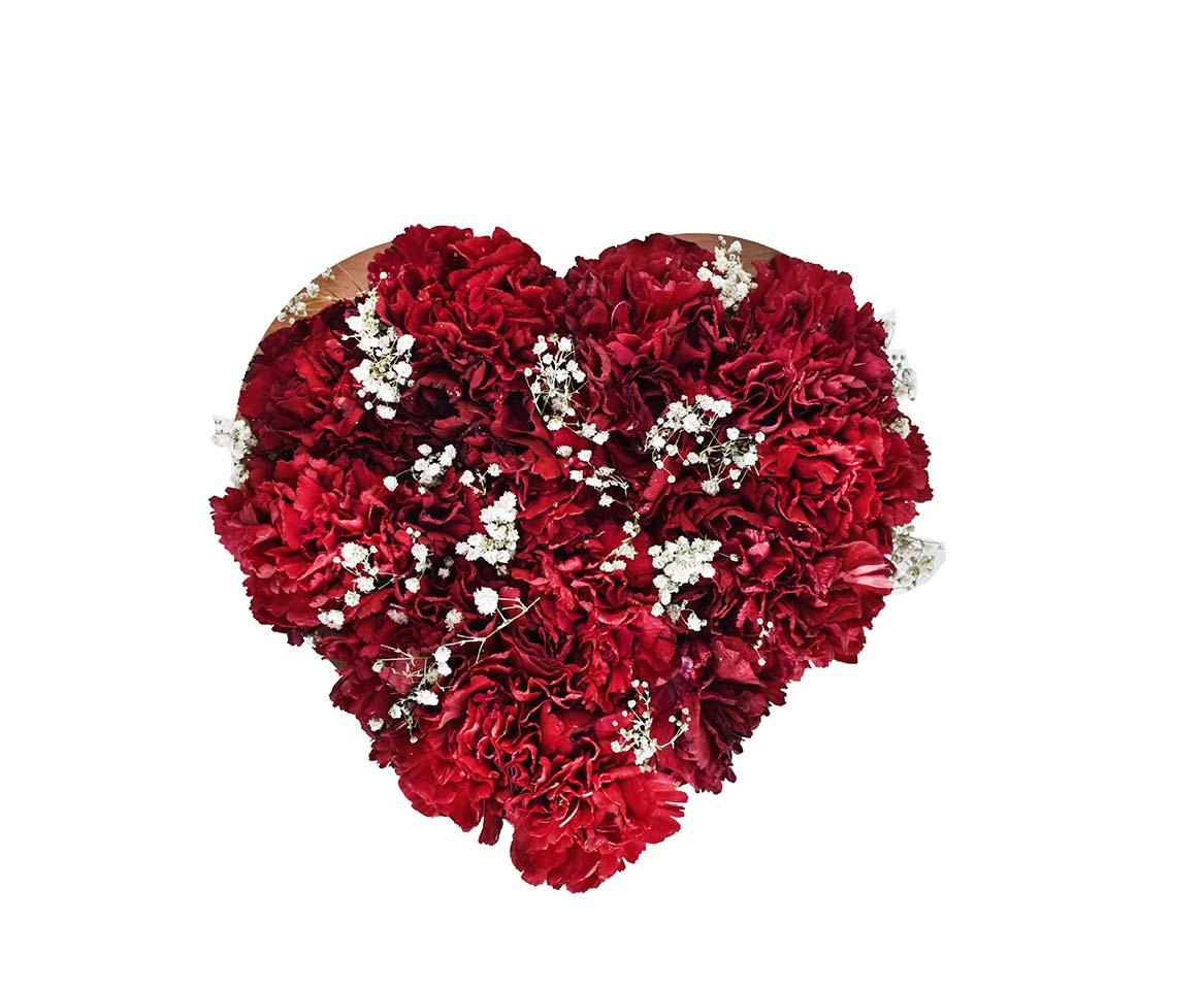 خرید و قیمت باکس گل مهرآیین باکس گل شیک سفارش باکس گل میخک نماد میخک قرمز گل ایرانی باکس گل ارزان