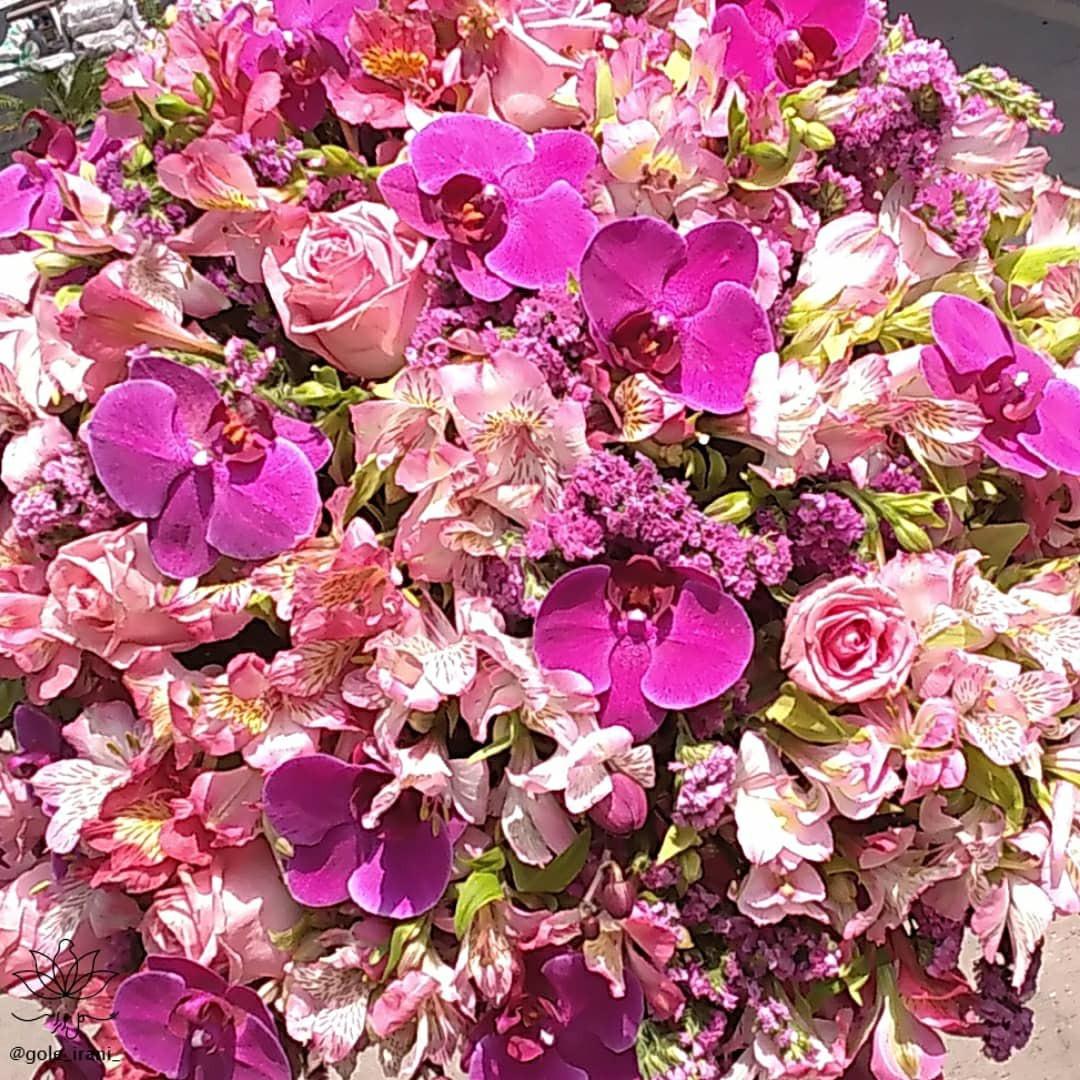 ارسال رایگان باکس گل در تهران سفارش اینترنتی باکس گل تولد دوست دختر برای دوستم چی بخرم