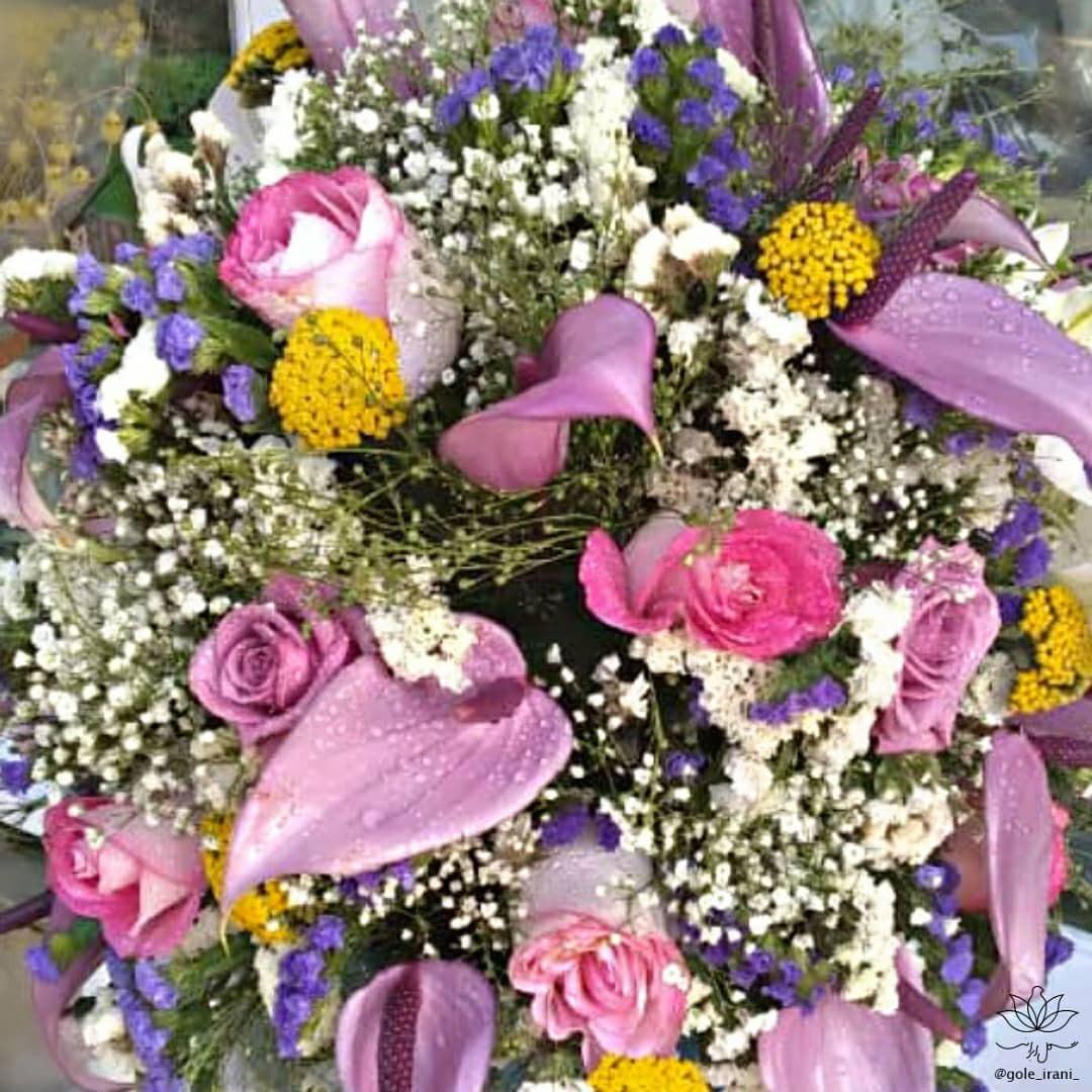 بازار آنلاین گل و گیاه خرید باکس گل آبی سفارش باکس گل آنتوریوم سفارش باکس گل با ارسال رایگان خرید باکس گل تولد