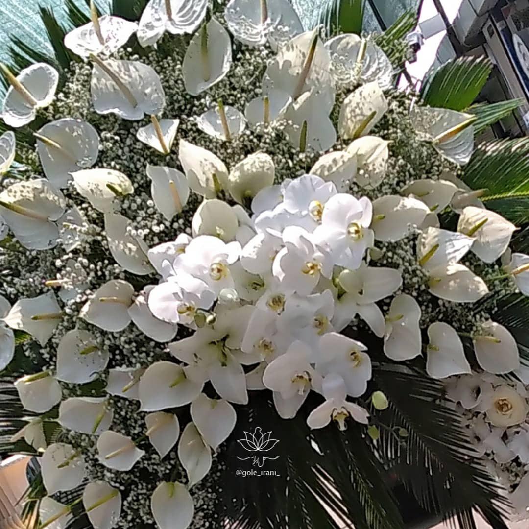 خرید و قیمت تاج گل مجال سفارش آنلاین تاج گل درباری تاج گل لوکس سفارش تاج گل با اسال رایگان