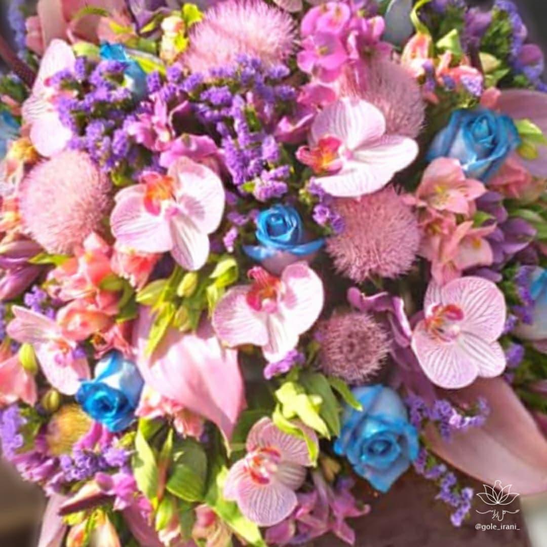 بازار آنلاین گل و گیاه سفارش آنلاین باکس گل با ارسال رایگان گلفروشی آنلاین در تهران