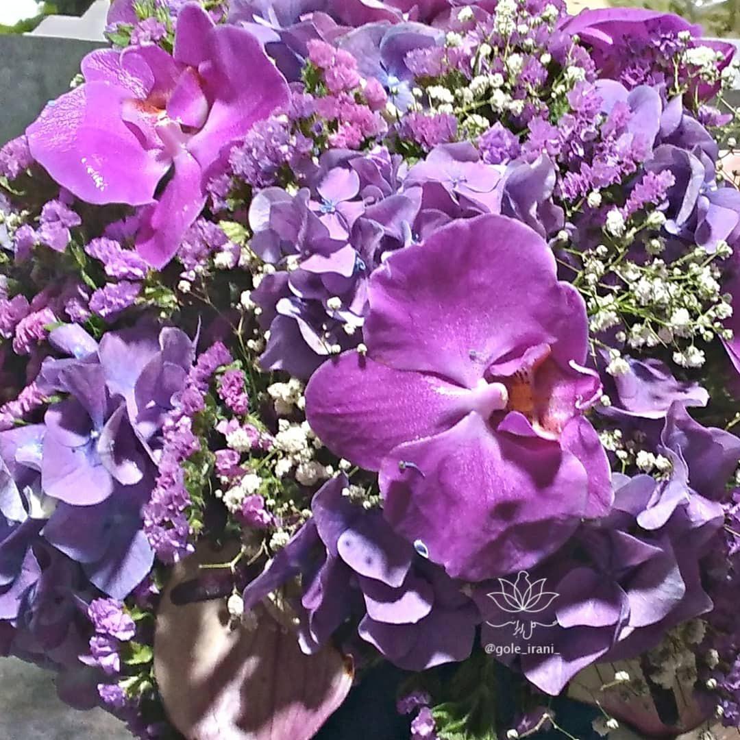 سفارش باکس گل با ارسال رایگان باکس گل ارکیده ارزان گل ایرانی بازار آنلاین گل و گیاه سورپرایز روز مادر