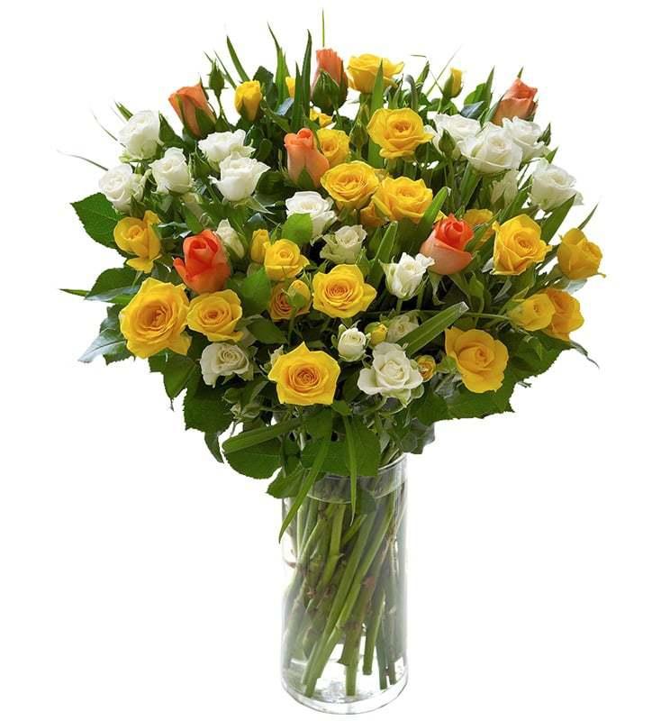 خرید و قیمت گلدان گل خیال انگیز سفارش گلدان گل ارزان گل رز مینیاتوری قیمت رز مینیاتوری گل ایرانی سفارش آنلاین گل