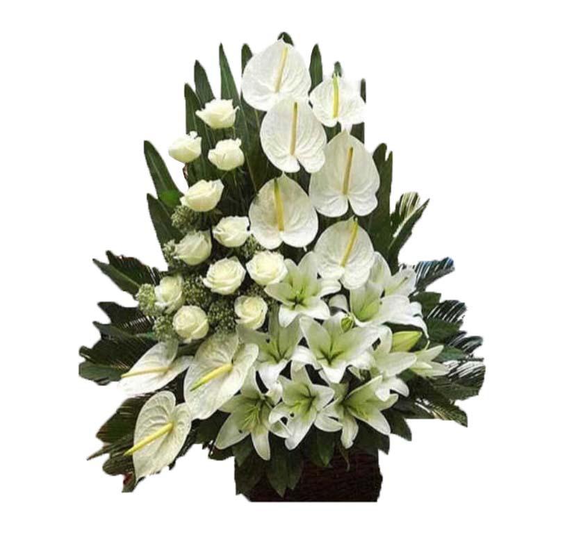 خرید و قیمت سبد گل خیال سفارش سبد گل ارزان قیمت سبد گل ترحیم سفارش یبد گل برای تسلیت گل ایرانی سفارش سبد گل