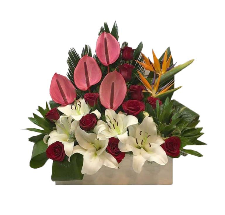 خرید و قیمت باکس گل آرام جان سفارش باکس گل ارزان ارسال رایگان باکس گل گل ایرانی قیمت باکس گل آنتوریوم