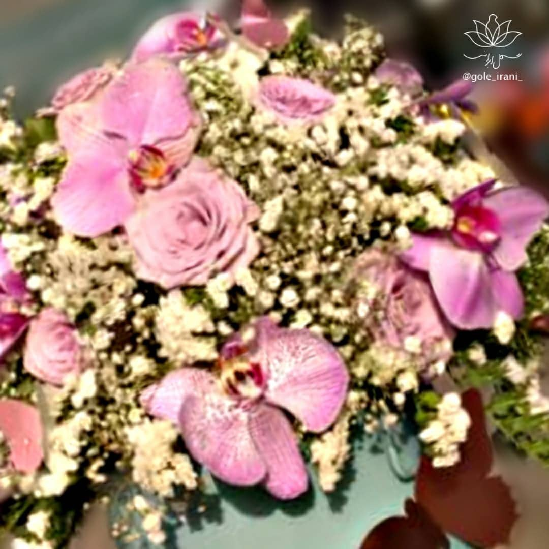باکس گل ارکیده باکس گل دخترانه سفارش باکس گل تولد باکس گل شیک