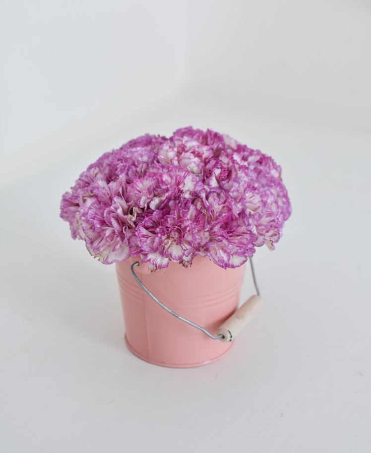 خرید و قیمت باکس گل یارا سفارش سطل گل صورتی باکس گل میخک نماد میخک صورتی گل ایرانی قیمت گل میخک