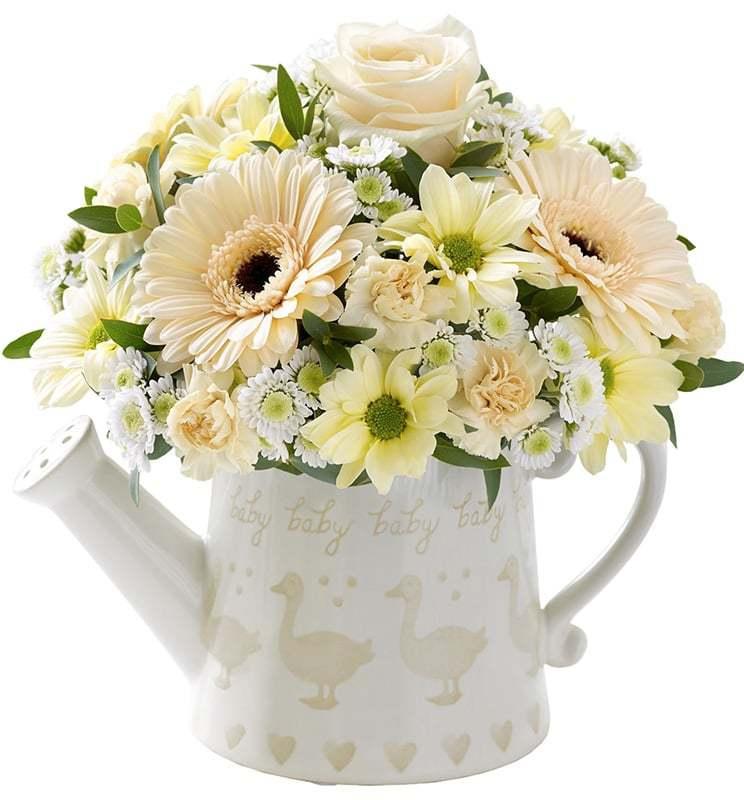 خرید و قیمت گلدان گل دیدار سفارش گلدان گل ژربرا سفارش گلدان گل ارزان قیمت گلدان گل فصل گل ایرانی خرید گلدان گل