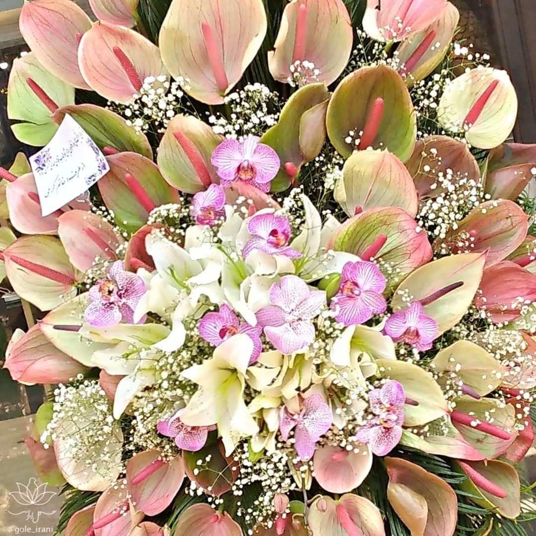 سفارش سبد گل ارزان خرید اینترنتی سبد گل قیمت سبد گل بله برون گل مناسب خواستگاری