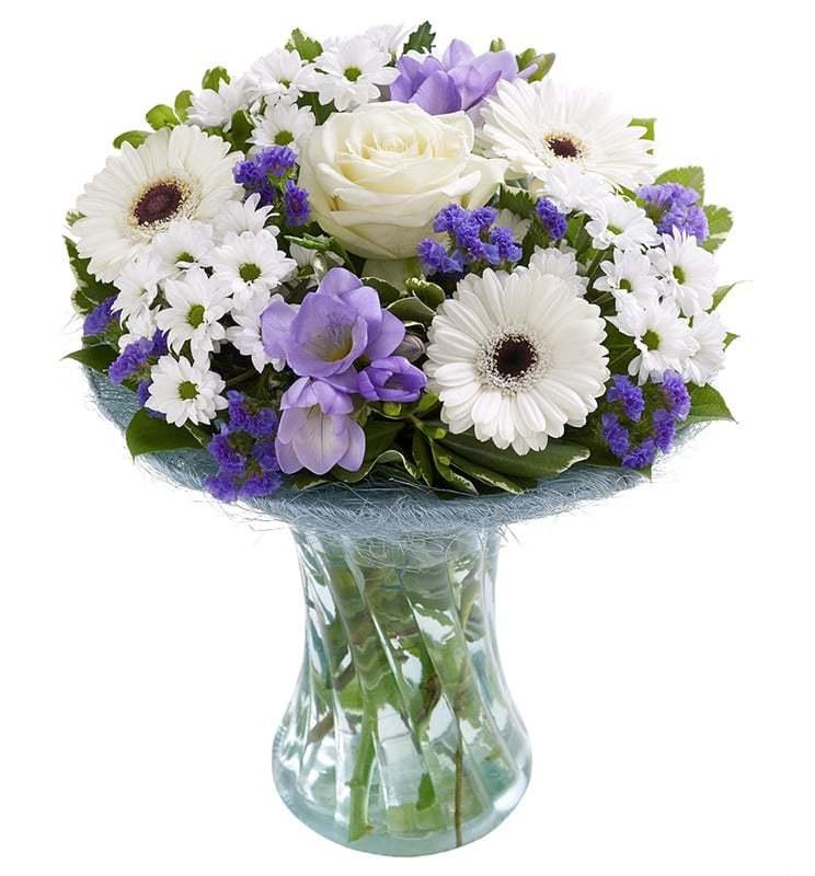 خرید و قیمت گلدان گل زمستان سفارش گلدان گل ارزان گل ایرانی ارسال رایگان گلدان گل خرید اینترنتی گلدان گل زمستانی