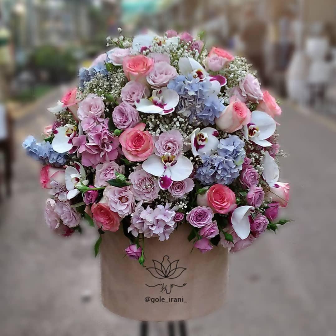 خرید و قیمت باکس گل غوغا باکس گل ارکیده سفارش باکس گل تولد خرید باکس گل با ارسال رایگان قیمت باکس گل ارکیده